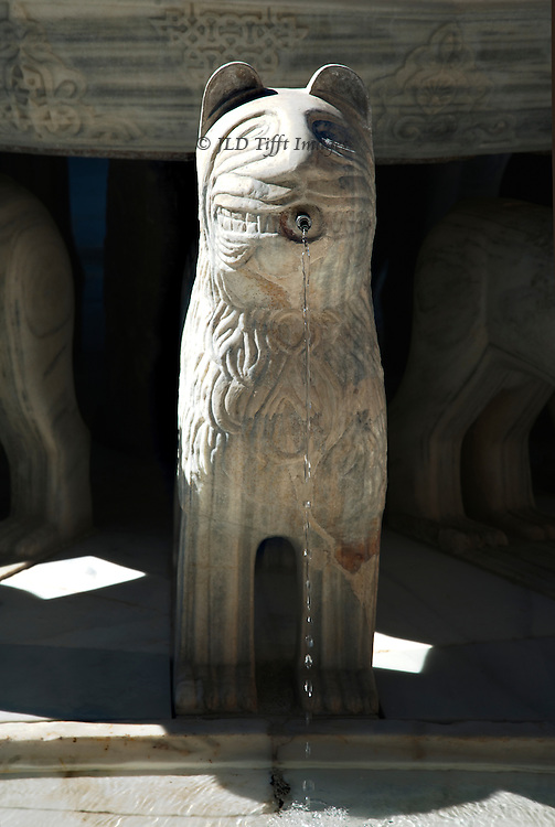 Single lion from among those circling the fountain in the Lion Court, Alhambra.  Water is dripping from its pursed lips.