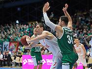 Wroclaw 19/10/2014<br /> Tauron Basket Liga<br /> Sezon 2014/2015<br /> Mecz WKS Slask Wroclaw v Stelmet Zielona Gora<br /> Na zdj. Adam Hrycaniuk /Stelmet/ i Aleksandar Mladenović /Slask/<br /> Fot. Piotr Hawalej