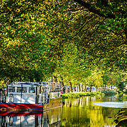 A Moored barge on the grand Canal in Dublin, with the rich foliage of the trees forming a canopy overhead