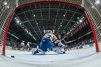 KELOWNA, CANADA - DECEMBER 1:  Mark Liwiski #9 of the Kelowna Rockets throws his arms in the air to celebrate after scoring a goal against Nolan Maier #73 of the Saskatoon Blades and triggering the annual teddy bear toss on December 1, 2018 at Prospera Place in Kelowna, British Columbia, Canada.  (Photo by Marissa Baecker/Shoot the Breeze)
