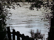 June, 2007 Brazos River on a rise.