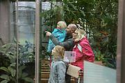 """Mannheim. 02.01.18   <br /> Luisenpark. Feature im Pflanzenschauhaus. Viele Besucher, darunter Familien, nutzen die """"Freien Tage"""" nach Weihnachten und Neujahr für einen Besuch im Luisenpark.<br /> - Familie Bartholomä aus Schifferstadt. <br /> - v.l. Leana, Thorsten, Luisa und Lorena<br /> Bild: Markus Prosswitz 02JAN18 / masterpress (Bild ist honorarpflichtig - No Model Release!) <br /> BILD- ID 00439  """