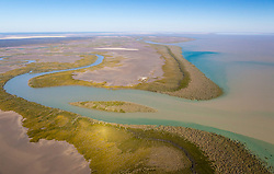 Healthy mangrove systems line the water's edge near Point Torment, north of Derby.  Point Torment is a proposed development site for a deepwater port to export coal, uranium, oil and gas.