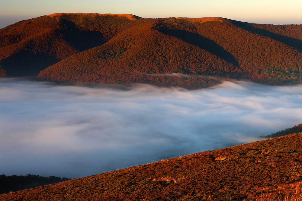 Rawki Peak in clouds, Bieszczady National Park, Poland