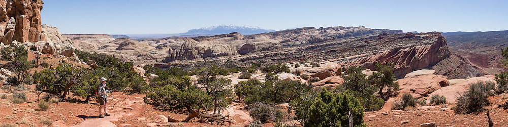 In the distance see the Henry Mountains from Rim Overlook, in Capitol Reef National Park, Utah, USA. (Along the way, don't miss the side trip to majestic Hickman Natural Bridge.) Capitol Reef National Park is centered upon the 100-mile-long Waterpocket Fold, the steep eastern limb of the Circle Cliffs Uplift, formed in Late Cretaceous time, during the Laramide Orogeny. Pressure caused by the subduction of the Farallon Plate beneath the North American Plate along the west coast caused several huge folds like this in southeast Utah, USA. Steeply tilted Triassic and Jurassic rocks form the hogbacks of the Waterpocket Fold and Capitol Reef, which is built of dark-red dune-formed Wingate Sandstone, thinly bedded river deposits of the Kayenta Formation, crested by the massive, white, dune-formed Navajo Sandstone. This panorama was stitched from 4 overlapping photos.