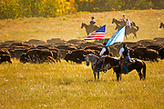 Custer State Park annual North American Bison Roundup in October.