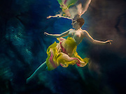 Topless woman in angel pose and coloured scarves floats underwater<br /> <br /> Underwater Beauty by Craig Minielly