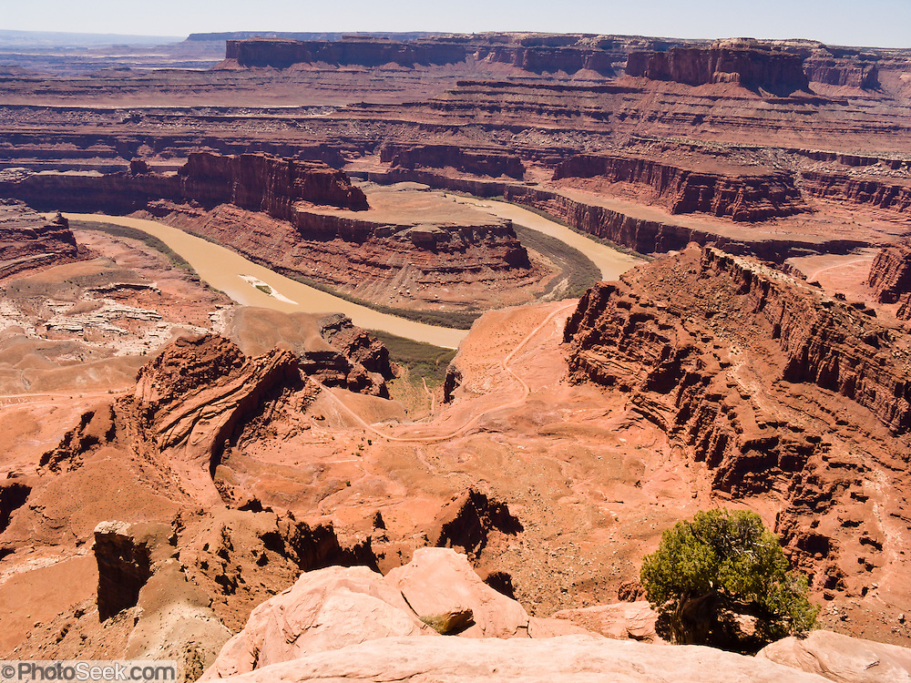 "Dead Horse Point State Park provides a dramatic overlook of the Colorado River and mesas and cliffs of Canyonlands National Park, in Utah, USA. The area was used in the final scene of the 1991 film ""Thelma & Louise."""