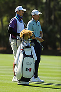 Carlos Ortiz (MEX) during Round 1 of the Players Championship, TPC Sawgrass, Ponte Vedra Beach, Florida, USA. 12/03/2020<br /> Picture: Golffile | Fran Caffrey<br /> <br /> <br /> All photo usage must carry mandatory copyright credit (© Golffile | Fran Caffrey)