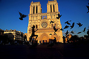 Notre Dame plaza - Paris, 2015.