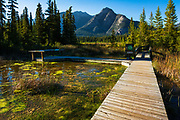 Boardwalk and interpretive signs at Cave and Basin National Historic Site, Banff National Park, Alberta, Canada