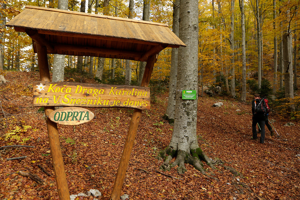 Trail signs on the approach to Sneznik mountain, Slovenia.