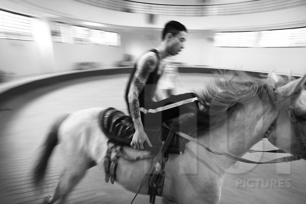 Man's riding house, he's training house for performance in circus. Vietnam, Asia.