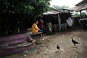 Daily life in the surroundings of Pak Ok, where the frst case of surrogate motherhood was recorded.<br /> Lom Sak, Petchabun province, Thailand. Aug 24 2014<br /> Credit : Giorgio Taraschi for The New York Times