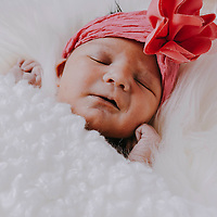 Baby Daphne's Newborn Session