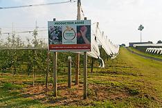 Vergers écoresponsables - Ségur-le-Château