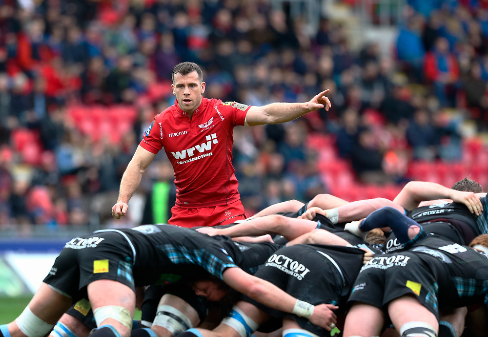 Scarlets' Gareth Davies watches the scrum<br /> <br /> Photographer Simon King/Replay Images<br /> <br /> Guinness PRO14 Round 19 - Scarlets v Glasgow Warriors - Saturday 7th April 2018 - Parc Y Scarlets - Llanelli<br /> <br /> World Copyright © Replay Images . All rights reserved. info@replayimages.co.uk - http://replayimages.co.uk