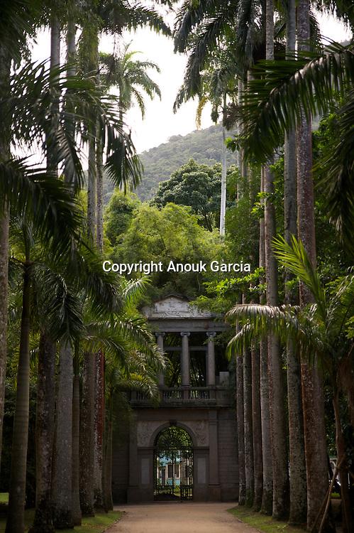Jardin Botanique de Rio de Janeiro surplombe? par le Christ et la fore?t da Tijuca, la plus grande foret primaire au coeur d'une ville.