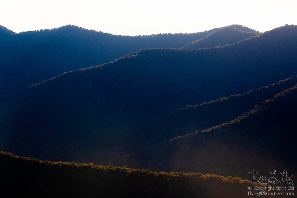Late afternoon light streaks only across the tops of the ridges along the Big Run in Shenandoah National Park, Virginia.