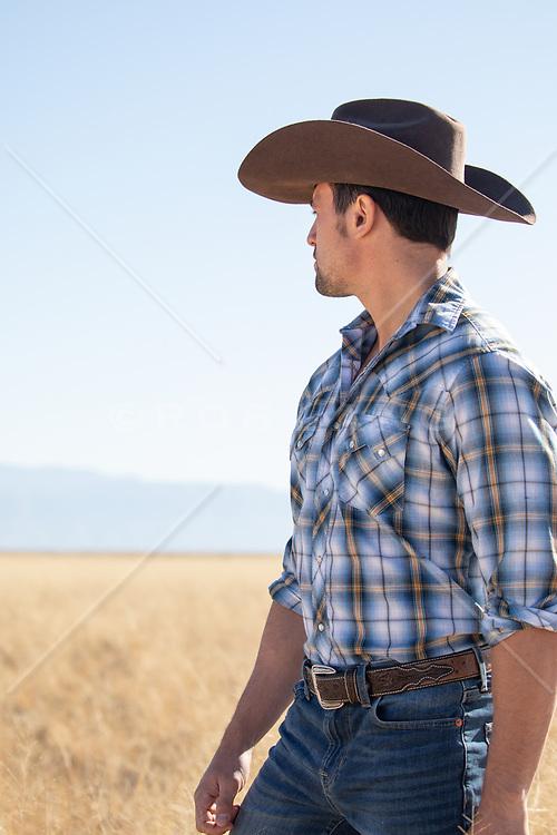 cowboy looking off at a mountain range