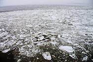 IJs in Waddenzee - Ice in Wadden Sea