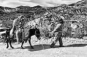 En el extremo norte de Chile, la comunidad de Socoroma, como muchas otras, se reúnen año tras año para celebrar una de las festividades más antiguas y significativas del ancestral y rico territorio andino: el Carnaval o Anata. El Carnaval Andino es fruto de las raíces precolombinas, cuyos ritos nos hablan de juego, tierra y lluvia; y de los nuevos aires traídos por los españoles, quienes nos acercaron costumbres cargadas de sátira, exceso y júbilo. Así, fundiendo de manera única ambas tradiciones, hoy se alza el Carnaval con una lógica propia y distintiva en el territorio andino chileno.<br /> <br /> Cuarenta días antes de Semana Santa es la fecha señalada, momento en que la fiesta del Carnaval se apodera completamente de los pueblos andinos. Una semana infinita dura la celebración, periodo durante el cual la fiesta configura el tiempo y el espacio de un pueblo que se reencuentra. El Carnaval es una instancia única para la comunión de una comunidad que durante el año se encuentra disgregada y ocupada en sus quehaceres diarios. Cuando empieza Carnaval, los pueblos andinos son inundados por el juego, la challa, la música y la danza, donde los excesos y las risas son los invitados de honor.<br /> <br /> Si existiera algún principio incuestionable que rigiera la fiesta del Carnaval, este sería el del eterno movimiento efervescente. Movimiento en forma de ritos realizados por su gente para invocar las lluvias que regarán los hermosos campos y harán florecer la vida en los Andes. Movimiento que nos recuerda nuestro estrecho vínculo con aquella naturaleza que sigue transformándose para hacer posible la vida social y cultural en este rincón del planeta. Movimiento que nos remite a los ciclos de la fertilidad y la reproducción. Así, regido por esta cosmovisión andina, el Carnaval aparece efervescente, explotando en cada paso un caudaloso río de ritos y prácticas, siempre al compás de un movimiento incesante.