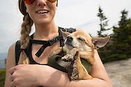 Woman hiker in sunglasses holding a sleeping chihauhau