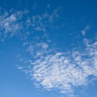 Cirrocumulus clouds in a bright blue sky (mackerel sky).