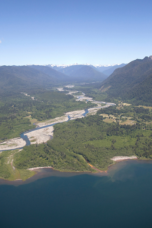 Quiniaut River & Rainforest