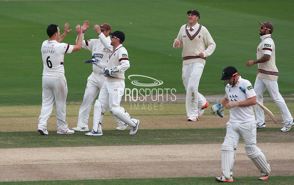 James Allenby celebrates after taking the wicket of Luke Wright during the LV County Championship Div 1 match between Sussex County Cricket Club and Somerset County Cricket Club at the BrightonandHoveJobs.com County Ground, Hove, United Kingdom on 14 September 2015. Photo by Bennett Dean.