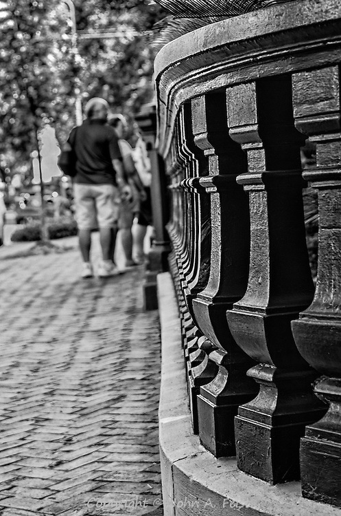 This wonderfully ornate fence was in front of a magnificent house in Savannah, GA.  I looked at it both in color and black and white and I think this version tells so much more.