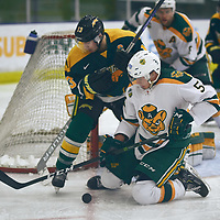 3rd year forward, Tristan Frei (13) of the Regina Cougars during the Men's Hockey Home Game on Sat Jan 26 at Co-operators Center. Credit: Arthur Ward/Arthur Images