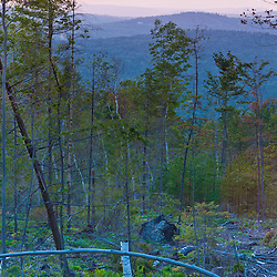 A recently logged area on the lower slopes of Black Mountain in Sutton, New Hampshire. Sunset.