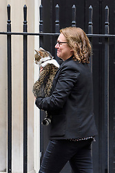 © Licensed to London News Pictures. 19/10/2017. London, UK. LARRY the Downing Street cat being removed form the front of 10 Downing Street ahead of a departure by Former president of the United States of America, BILL CLINTON. British prime minister Theresa May and Bill Clinton were due to discuss the current political deadlock in Northern Ireland in an attempt to restore the power-sharing executive. Photo credit: Ben Cawthra/LNP