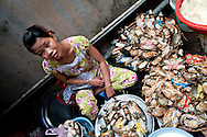 Portrait of a crab seller in a market of Hue, Vietnam, Southeast Asia