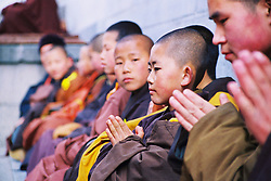 China, Wutai Shan, 2008. Young boys of varying ages practice their concentration outside in the warmth of midday. Wutai's many Buddhist orders attract devotees of all types.