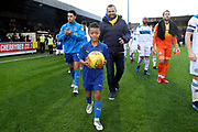mascot during the EFL Sky Bet League 1 match between AFC Wimbledon and Rochdale at the Cherry Red Records Stadium, Kingston, England on 8 December 2018.