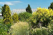 20100702 Summer Garden