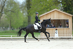 Redefin - Pferdefestival 2015
