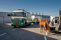 Departure horses for WEG Tryon<br /> Departure horses from Liege Airport<br /> FEI World Equestrian Games™ Tryon 2018<br /> © Hippo Foto - Dirk Caremans<br /> 01/09/2018