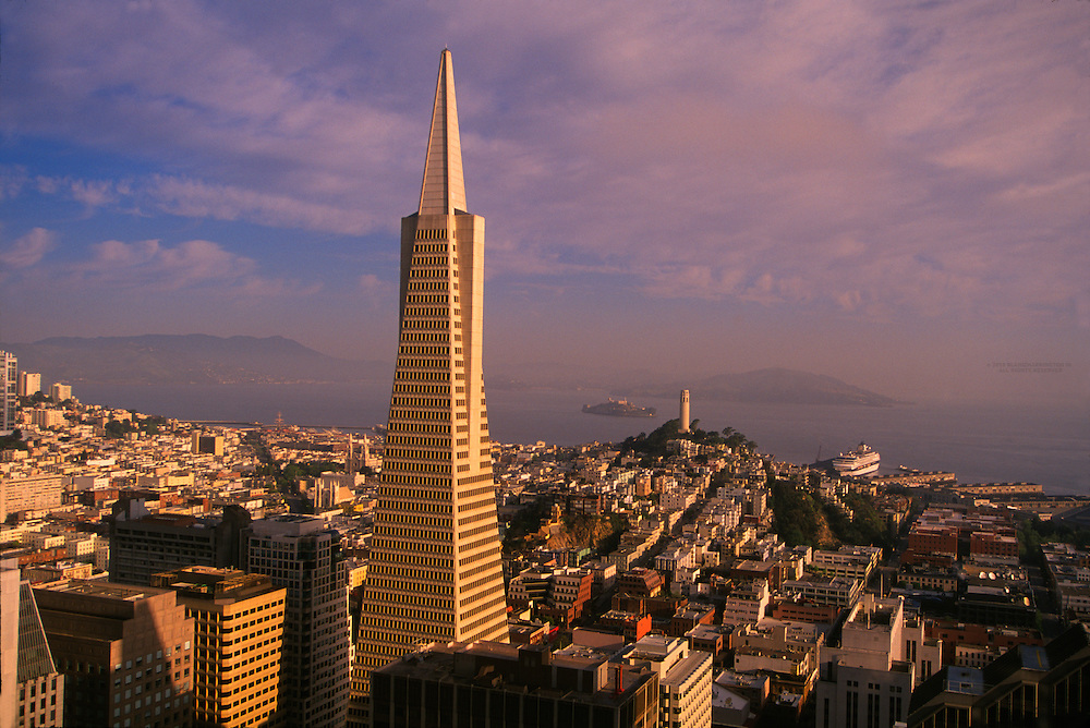 Transamerica pyramid and the skyline of San Francisco, San Francisco, California
