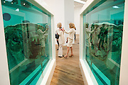 ERICA BOLTON; LADY WOLFSON, Damien Hirst, Tate Modern: dinner. 2 April 2012.
