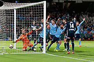 SYDNEY, AUSTRALIA - MAY 12: Sydney FC celebrate the goal of defender Aaron Calver (2) at the Elimination Final of the Hyundai A-League Final Series soccer between Sydney FC and Melbourne Victory on May 12, 2019 at Netstrata Jubilee Stadium in Sydney, Australia. (Photo by Speed Media/Icon Sportswire)