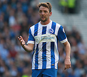 Brighton central midfielder Dale Stephens during the Sky Bet Championship match between Brighton and Hove Albion and Cardiff City at the American Express Community Stadium, Brighton and Hove, England on 3 October 2015. Photo by Bennett Dean.