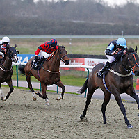 Lingfield 8th February