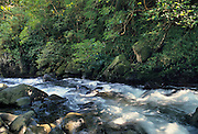 Iao Valley, Iao Valley State Monument, Iao Stream, Iao Needle, Maui, Hawaii