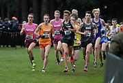 Dec 1, 2018; Portland, OR, USA; Liam Anderson (205) of California, Cole Sprout (255) of Southwest, Nico Young (361) of Newbury Park and Easton Allred (299) of Denver lead the boys race during the Nike Cross Nationals at Glendoveer Golf Course. Nelson won in 14:57.8.