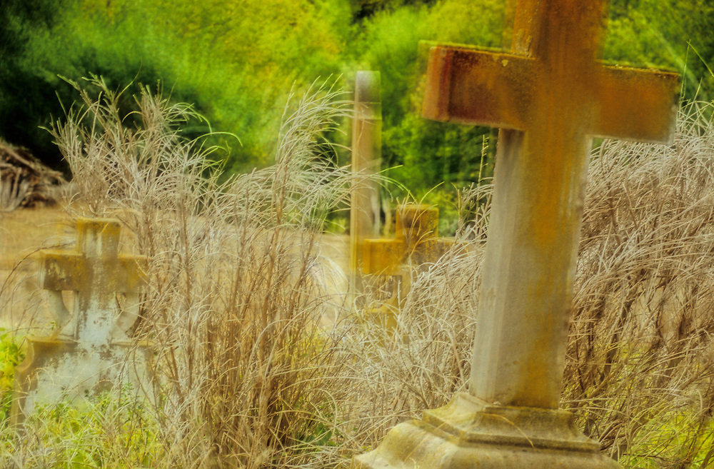 Crosses from different cemeteries and grasses are blended to work together