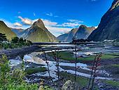 NEW ZEALAND: Fiordland NP, South Island