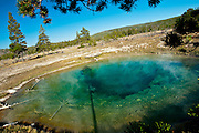 Near the Firehole River, Yellowstone National Park, WY, on Sept. 7, 2012.  (Photo by Aaron Schmidt © 2012)
